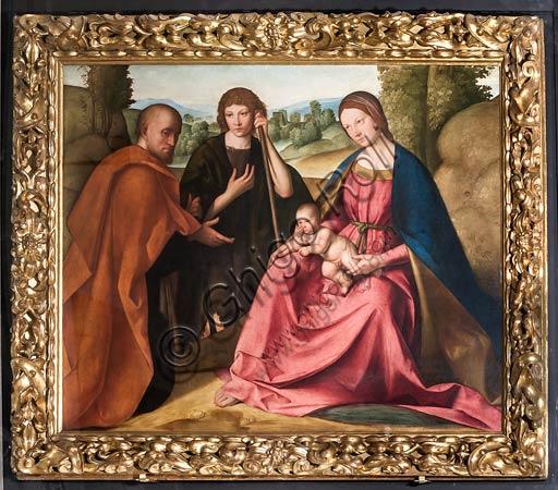 """Modena, Galleria Estense: """"Adorazione dei Pastori"""" (Madonna con Bambino e due pastori), di Boccaccio Boccaccino (1466-1525). Particolare."""