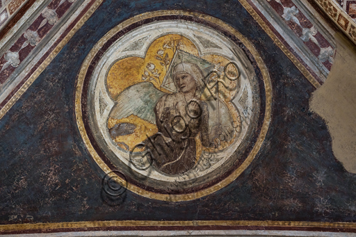 "Basilica of the Holy Cross, the Bardi Chapel, vault: ""Allegory of Chastity"", (1320 - 1325)  by Giotto."