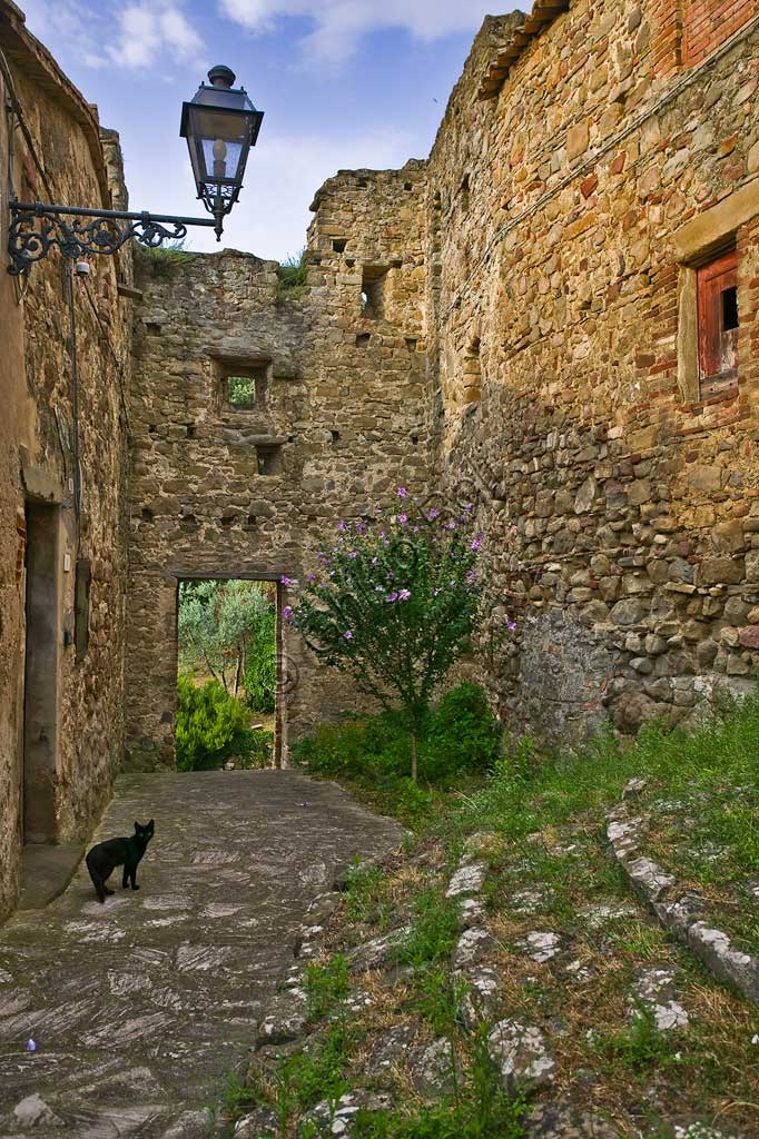 The hamlet of Ceralto: a narrow lane with a streetlamp and a small black cat.