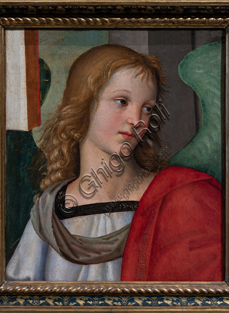 """Brescia, Pinacoteca Tosio Martinengo: """"Angel"""", by Raffaello Sanzio, 1501."""