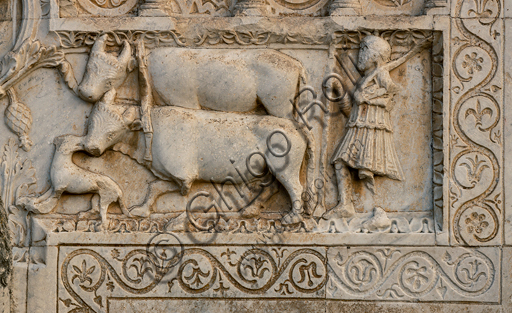 Spoleto, St. Peter's Church: the façade. It is characterized by Romanesque reliefs (XII century). Detail of ox.