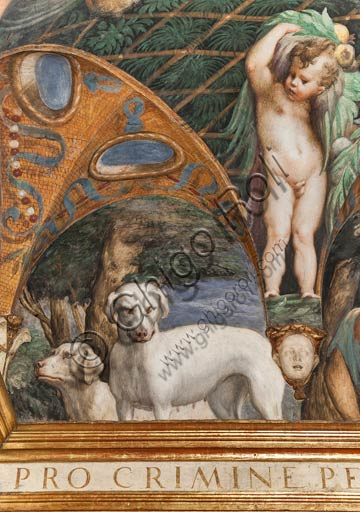 Parma, Fontanellato, Rocca Sanvitale, room of Diana and Actaeon: detail with dogs, from the cycle of frescoes by Parmigianino (Girolamo Francesco Maria Mazzola) depicting the myth of Diana and Actaeon, taken from Ovid's Metamorphoses. The room, frescoed in 1524, probably was the bathroom of Paola Gonzaga, wife of Galeazzo Sanvitale.