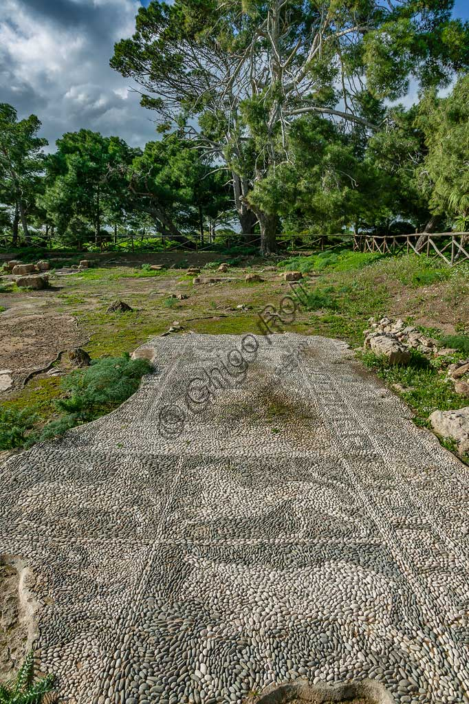 """Island of San Pantaleo, Motya: view of the """"House of Mosaics"""". Detail of a mosaic of white and black pebbles depicting animals (lion, deer)."""