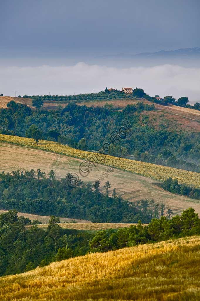 Hills near Saragano.