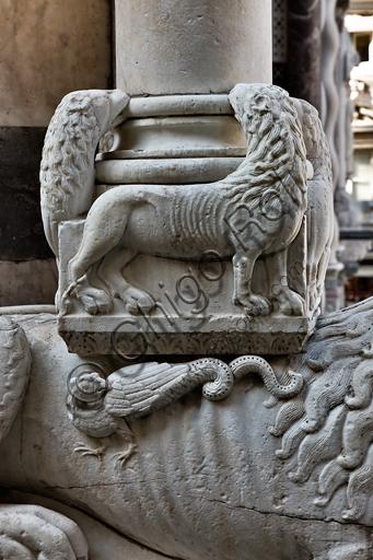 """Genova, Duomo (Cattedrale di S. Lorenzo), la facciata, lato ovest, angolo nord-ovest: base di """"colonna con leoni, leonesse e leone stiloforo"""", di bottega di Benedetto Antelami, 1200 circa.Particolare."""