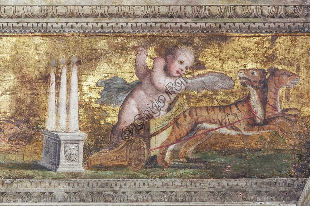 Ferrara, the Castello Estense (the Estense Castle), also known as Castle of St. Michael: detail of the cornices decorated with putti driving fantastical chariots and festoons of fruit onm a golden backgorund. Work by Leonardo da Brescia.The Chamber, former Ercole II's private room, was known in 1600 as the mirror chamber. It gives the name to the  whole representation apartment that Alfonso II wanted. The vault scenes are thought to be the allegory of human life.