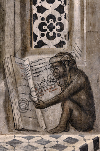 """""""The monkey with glasses that reads"""". Orvieto, MODO (Museum of the Opera of the  Duomo of Orvieto): Alberi Library, a cycle of monochrome frescoes where famous classical masters of different subjects are represented (law, medicine, astronomy, grammar), attributed to Luca Signorelli's pupils, 1501-1503: detail of the most famous and most curious drawing of the monkey with glasses that opens a book where the phrase """"Legere et non intelligere est negligere"""" appears (Reading and not understanding is equivalent to not reading). A moral maxim of an anonymous author dated approximately around the third century and become very famous in schools, especially for students of Latin grammar."""