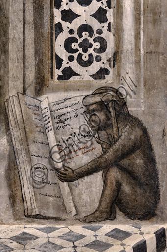 """""""La scimmia con gli occhiali che legge"""". Orvieto, MODO (Museo dell'Opera del Duomo di Orvieto), Libreria Alberi, ciclo di affreschi a monocromo dove sono rappresentati famosi maestri classici delle diverse materie (diritto, medicina, astronomia, grammatica), attribuiti alla scuola di Luca Signorelli, 1501-1503: particolare del disegno più celebre e più curioso  della scimmia con gli occhiali che apre un libro dove compare scritta la frase """"Legere et non intelligere est negligere"""" (Leggere e non capire equivale a non leggere). Una massima morale di un autore anonimo datata indicativamente intorno al III secolo e diventata molto famosa nelle scuole, in particolare per gli studenti della grammatica latina."""