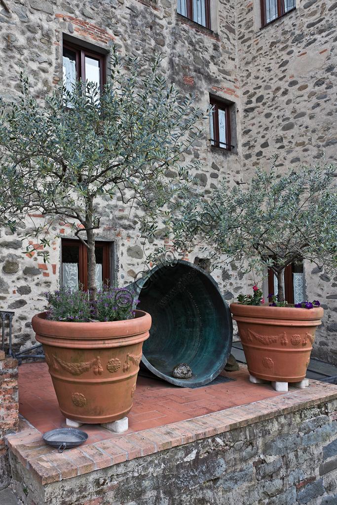 Hotel San Lorenzo (l'albergo ricavato in una antica cartiera sul torrente Pescia): particolare dell'esterno con ulivi, a fianco dell'ingresso.