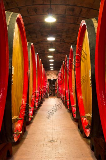 Distilleria Peloni, the cellars: the barrels for the ageing of Braulio tonic liquor.