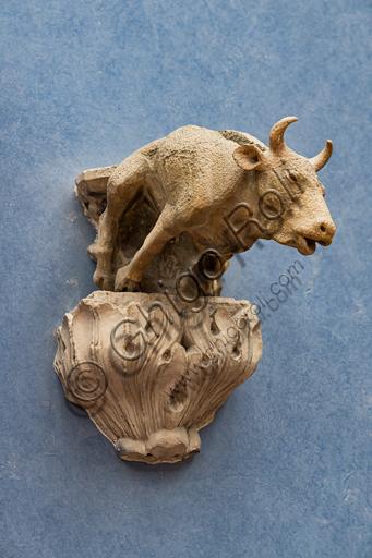 "Circloe of Lorenzo Maitani: ""Bull-shaped Gargoyle"", XIV century, marble."