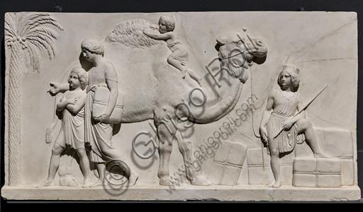 """""""L'ingresso di Alessandro Magno in Babilonia"""", fregio eseguito tra il 1818 e il 1828 da Bertel Thorvaldsen  (1770 - 1844) calco in gesso da un originale in marmo di Carrara. E' concepito come l'incontro tra due cortei che convergono verso il centro, cioè verso la figura di Alessandro Magno che avanza sul carro guidato dalla Vittoria, seguito dal suo celebre destriero Bucefalo e dai suoi soldati carichi di bottino. Di fronte al condottiero la figura allegorica della Pace, riconoscibile dal ramo di ulivo, precede il popolo e i governanti di Babilonia, che offrono i loro doni (cavalli, leoni, pantere…) al vincitore, mentre danzatrici spargono fiori in suo onore.Particolare con dromedario, palma e giovanetti."""