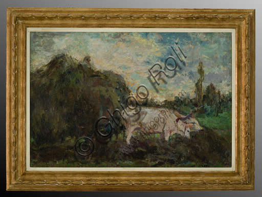 "Evaristo Cappelli (1868 - 1951); ""Oxen"" (oil painting on canvas, 53 x 79 cm)."