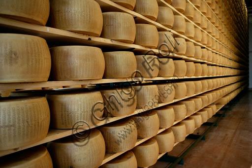 Wheels of Parmesan cheese.