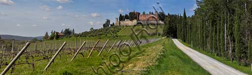 Gaiole in Chianti: view of the Brolio Castle and the surrounding countryside with olive trees, vineyards and cypresses.