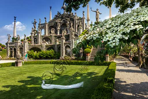 Isola Bella, the Borromeo Palace, the park with the Baroque Italian garden: the Amphitheatre on whose top there is the statue of the unicorn, emblem of the Borromeos. On the meadow a white peacock. In the foreground on the right, a Cornus Kousa tree in full bloom.