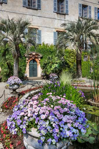 Isola Madre, the Borromeo Palace: partial view of the garden with the water lilies pool and palm trees.