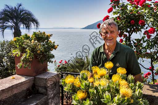 Isola Madre, the Protea Terrace: Giancarlo Giustina, head gardener of the Botanical Gardens of Borromee Islands.