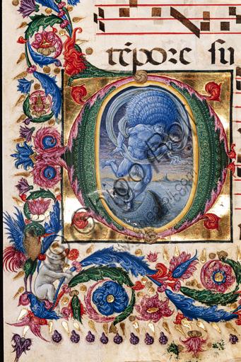 """Libreria Piccolomini: corale cod. 20.5, cc. 36v con """"Eolo"""", di Liberale da Verona  (1445 ca - 1527/9). Particolare."""