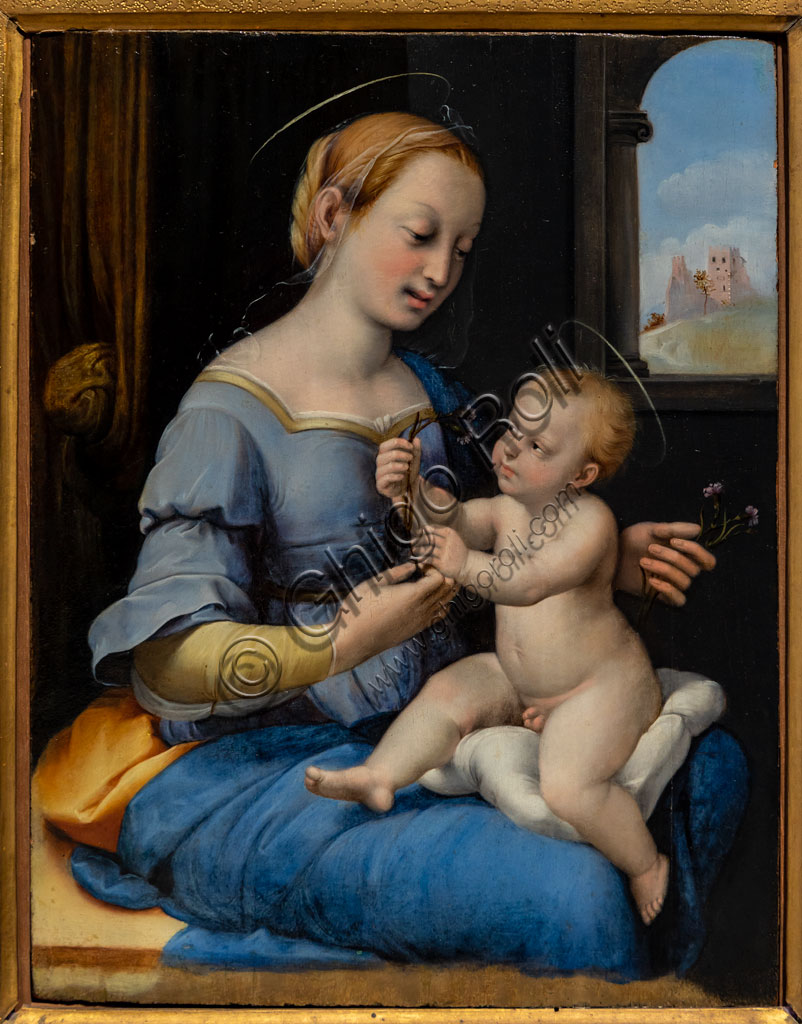 "Brescia, Pinacoteca Tosio Martinengo: ""Madonna of the pInks"", by Raffaello Sanzio's worskhop, 1520-30- Oil painting on panel."