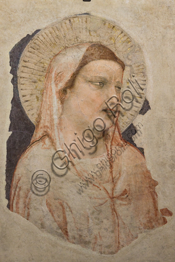 "Basilica of the Holy Cross: ""Grieving Madonna"", 1305-10, by Giotto, detached fresco."