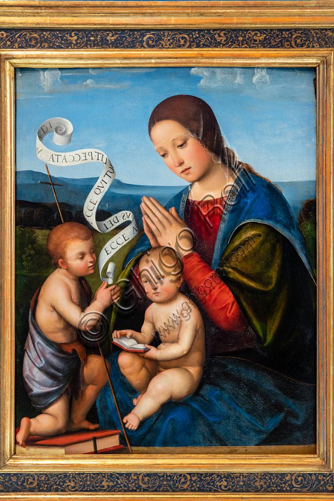 "Brescia, Pinacoteca Tosio Martinengo: ""The Virgin Mary with Infant Jesus and Infant St. John"", by Francesco de Raibolini, known as Francesco Francia, 1500 - 1505. Oil painting."