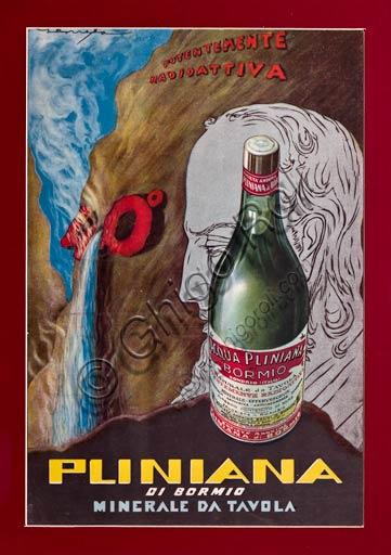 Advertising vintage poster of Pliniana water.