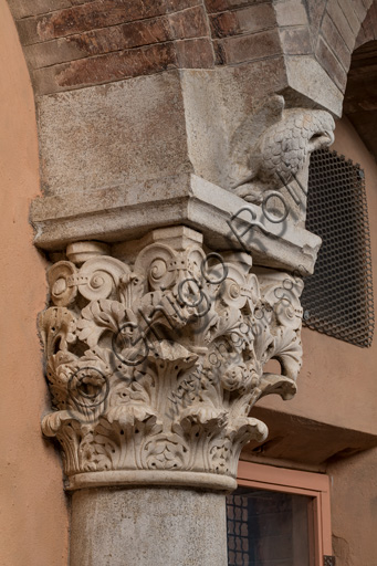 Modena, Ghirlandina Tower, Torresani Hall, south wall: Corinthian capital with a sculpted bird in the abacus protome. Campionese Masters, XII - XIII century.