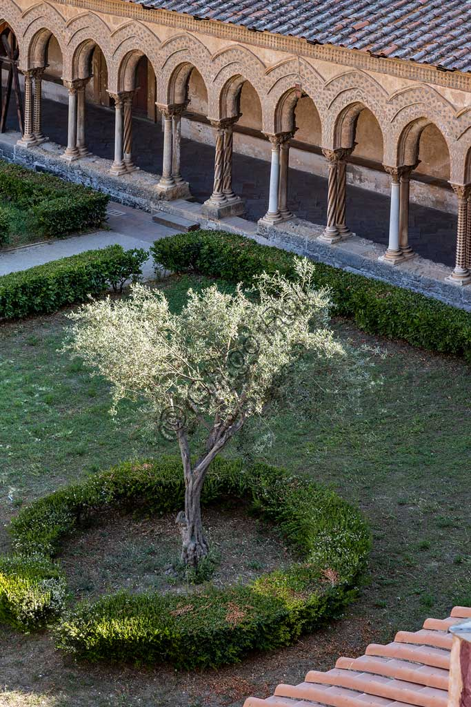 Monreale, Duomo, cloister of the Benedictine monastery: view of the cloister (XII century) with  a series of  arches and a flowerbed with an olive tree.