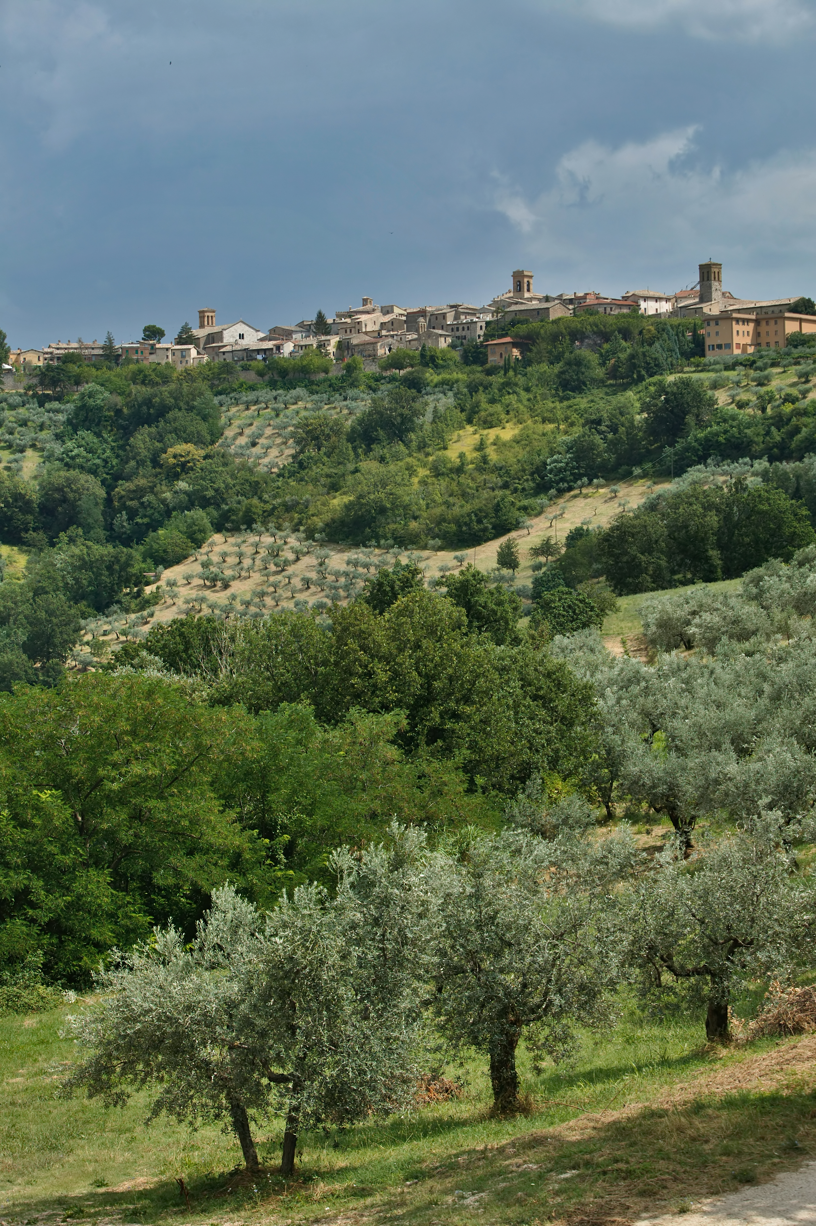Montefalco: view of the small town and the surrounding coutryside.