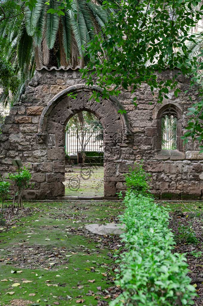Palermo, the Botanical Gardens: the remains of the Church of St. Dionysius in Chiaramontano Gothic style (XIV century).