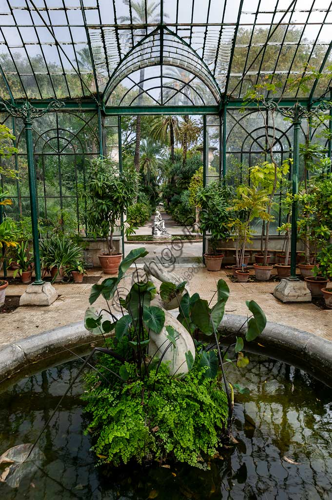 Palermo, the Botanical Gardens: partial view of a greenhouse.