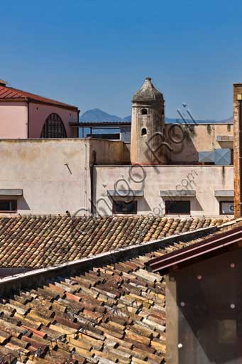 Palermo, The Royal Palace or Palazzo dei Normanni (Palace of the Normans): view of the Palace roofs.