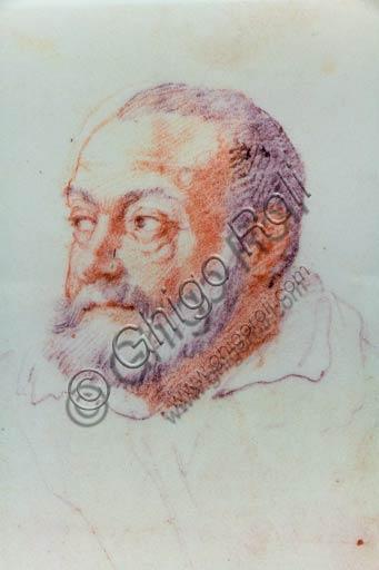 Piacenza, Palazzo Farnese, Musei Civici: Ritratto di Jacopo Barozzi da Vignola, detto il Vignola, di Federico Zuccari.