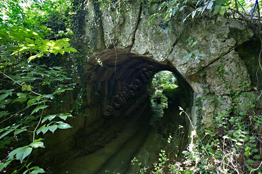The Roman bridge on the Flaminia road in Cavallara locality.
