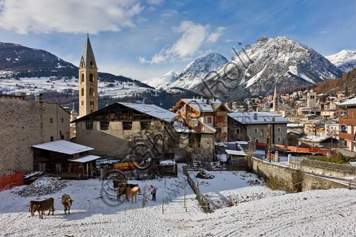 View of Combo. In the background, on the right, Bormio centre.
