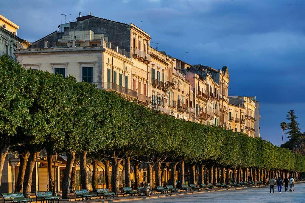 Syracuse, Island of Ortigia: view of the Vittorio Emanuele ii Forum.