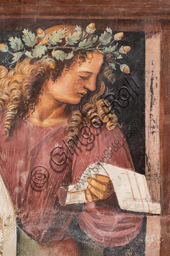 """Orvieto, Basilica Cattedrale di Santa Maria Assunta (o Duomo), interno, Cappella Nova o di San Brizio, parte inferiore delle pareti, serie dei Personaggi illustri dove ogni figura è circondata da tondi in monocromo che hanno la funzione di identificare il personaggio attraverso la rappresentazione di episodi tratti dalle sue opere: """"Tibullo"""""""
