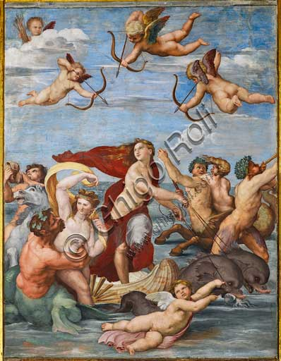 "Rome, Villa Farnesina, the Loggia of Galatea:  ""The Triumph of Galatea"", by Raphael (1513 - 4). Galatea was the beautiful nymph whom Raphael depicted amongst a throng of sea creatures as she speeds away from her admirer on a fantastical shell drawn by dolphins."