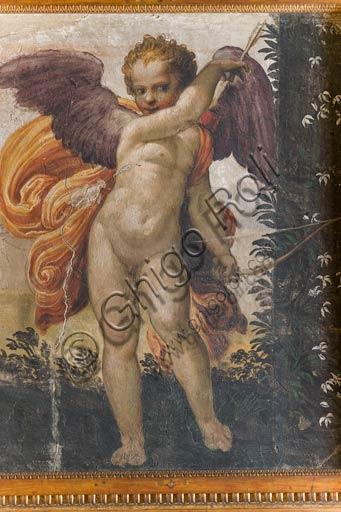 """Parma, Soragna, Rocca Meli Lupi, Sala Gialla: """"Amore che incocca la freccia nell'arco"""", affresco staccato, attribuito a Niccolò dell'Abate."""