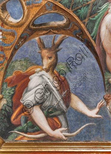 Parma, Fontanellato, Rocca Sanvitale, stanza (o stufetta) di Diana e Atteone: particolare del ciclo di affreschi del Parmigianino (Girolamo Francesco Maria Mazzola) raffiguranti il mito di Diana e Atteone, tratto dalle Metamorfosi di Ovidio. La stanza, affrescata nel 1524, era probabilmente il bagno privato di Paola Gonzaga, moglie di Galeazzo Sanvitale. Particolare del lato Sud, con Atteone trasformato in cervo.