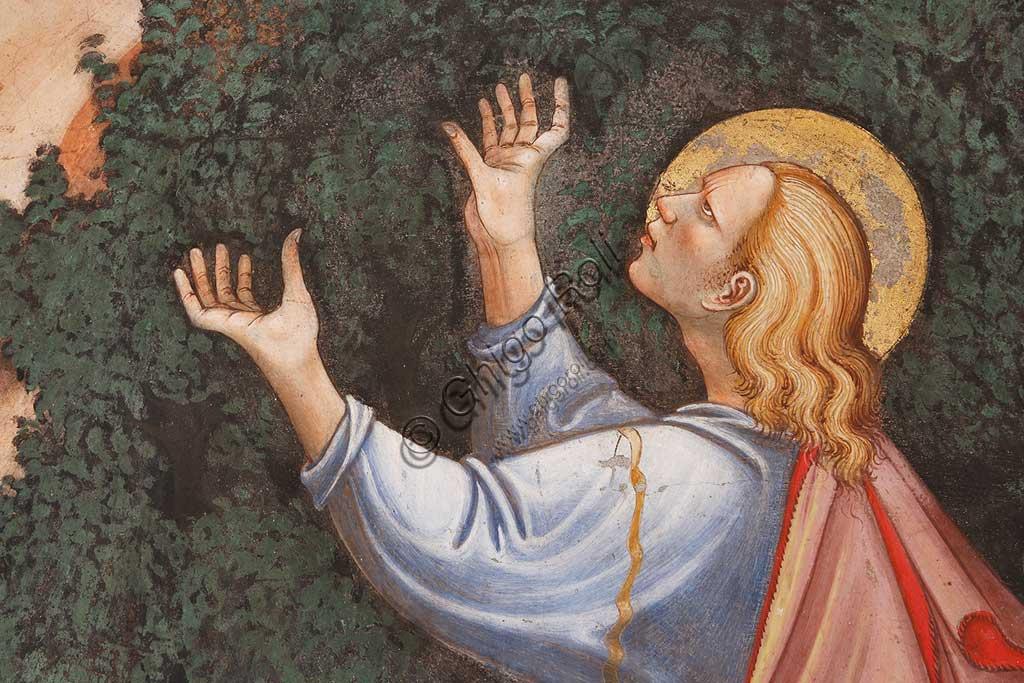 """Rocca di Vignola, Cappella Contrari, parete meridionale: """"Assunzione della Vergine """" e """"Consegna del cingolo a Tommaso"""", affresco del Maestro di Vignola, anni Venti del Quattrocento. Particolare con S. Tommaso."""