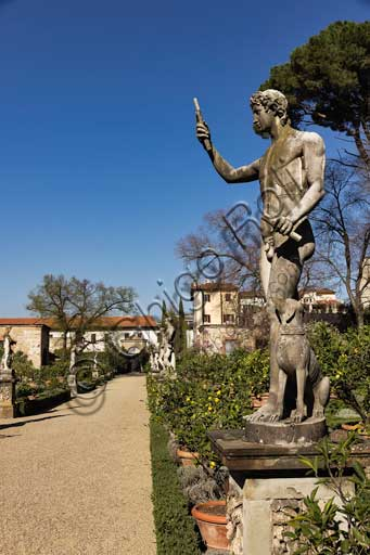 Florence, Palazo Corsini al Prato: male statue with a dog in the gardens.