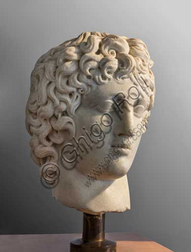 Fiesole, Archaeological Museum: head of young man, characterised by bushy hair.