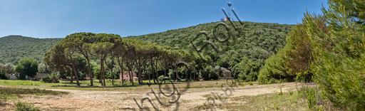 Regional Park of Maremma,